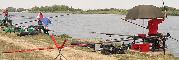 Three anglers in a line, all with fish on. Furthest away: A18 Goran Radovic, A18 Serbia. Middle: Andy Amos, A19 Wales. Nearest: Marcus Balogh, A20 Austria.