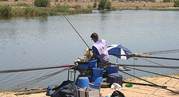 Italy's Alessandro Bruni nets a carp in the last minute to push him ahead of England's Steve Gardener by just under 200 grams!